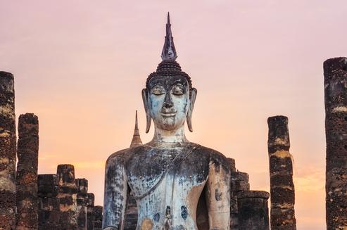 meditation teacher and mentor